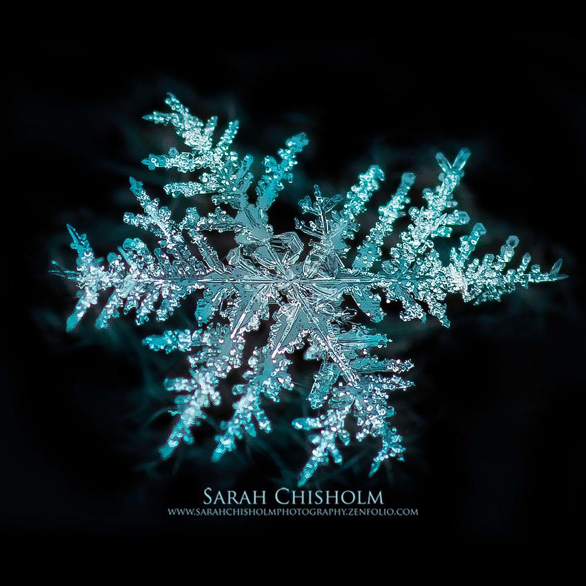 Snowflake Fire