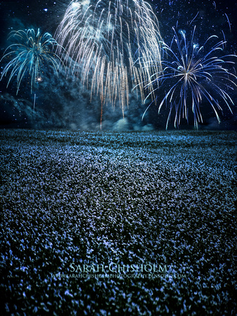 Fireworks Over Flax Fields